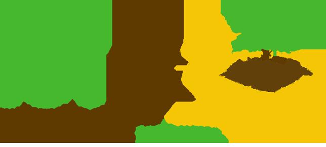 ICTIB